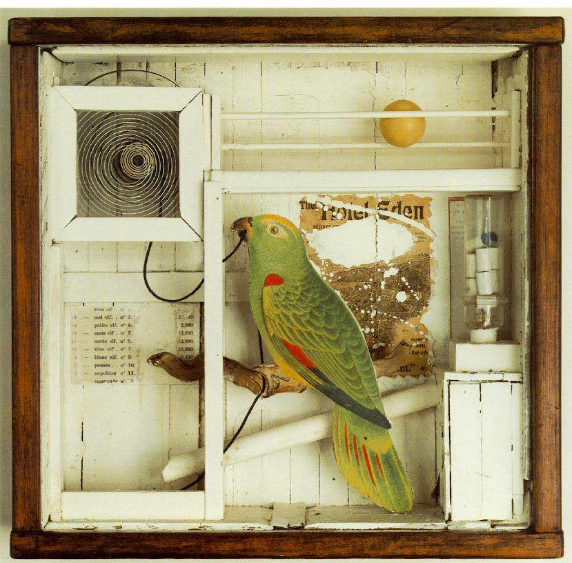 a Joseph Cornell aviary assemblage